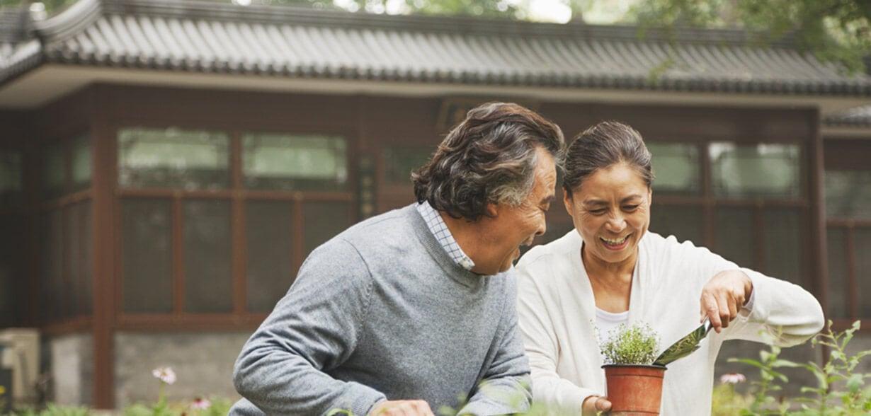 Couple faisant du jardinage ensemble en plein air